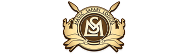 safari_lyx